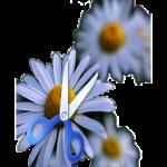 ImageResizer-256x256