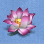 LotusView-icon_256x256